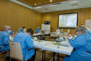 Nach der Theorie zur Praxis: Am Schweinekiefer konnten die Teilnehmer unter der Leitung von Dr. Sebastian Horvath Behandlungskonzepte zur Knochenregeneration nach Zahnextraktion und um Implantate üben.